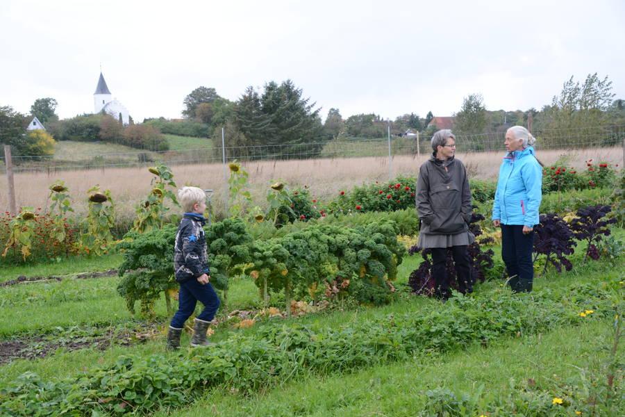Den store urtehave bugner af biodynamiske frugter og grønsager, og den bliver dobbelt så stor, når Torpegård er fuldt udbygget. Foto: Palle Søby