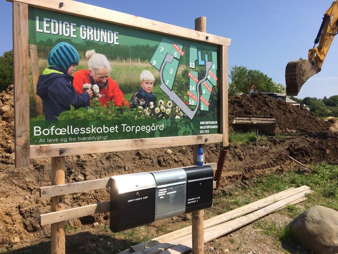 Der er stadig fem ledige grunde på Torpegård, som håber på flere børnefamilier. Foto: Palle Søby